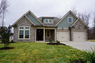 Lenoir City Single Family Home For Sale: 298 Silver Leaf Drive