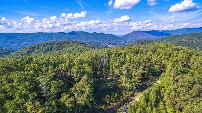 Blount County Residential Lots & Land For Sale: 226 Fence Rail Gap Rd