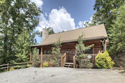 Sevier County Single Family Home For Sale: 727 Golden Eagle Way