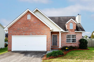 Single Family Home For Sale: 252 Fyke Drive