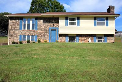 Loudon County Single Family Home For Sale: 748 Crestview Circle