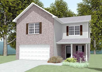 Knoxville Single Family Home For Sale: 6947 Holliday Park Lane
