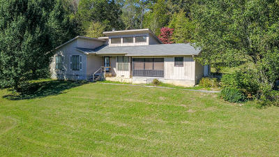 Knoxville Single Family Home For Sale: 315 N Molly Bright Rd