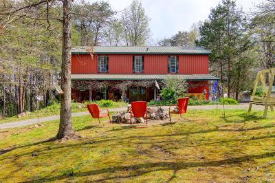 Grainger County Single Family Home For Sale: 120 Newman Lane