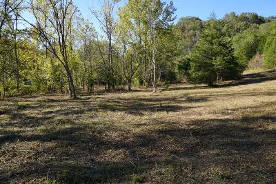 Grainger County Residential Lots & Land For Sale: 1270 Puncheon Creek Rd