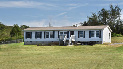 Blount County Single Family Home For Sale: 1360 Martin Mill Pike