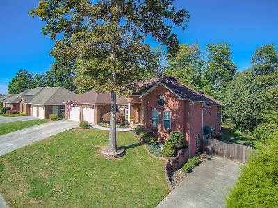 Blount County Single Family Home For Sale: 2254 Argonne Drive