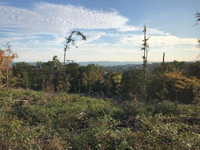 Knoxville Residential Lots & Land For Sale: 0 Fort Sumpter Rd
