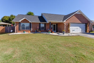 Blount County Single Family Home For Sale: 1428 Raulston Rd