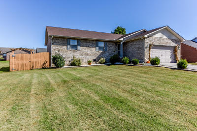 Blount County Single Family Home For Sale: 1424 Raulston Rd