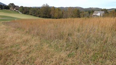 Tazewell Residential Lots & Land For Sale: 522 Woodlake Blvd