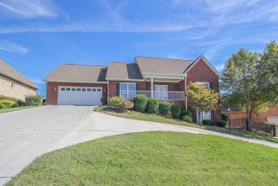 Maryville Single Family Home For Sale: 525 Crooked Stick Drive