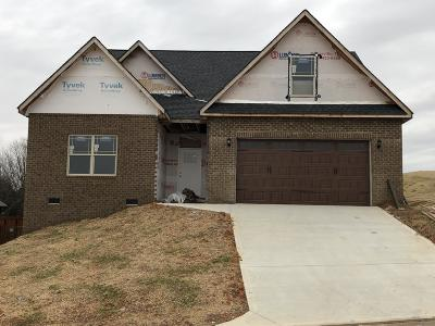 Maryville Single Family Home For Sale: 2824 Wallace Hitch Drive