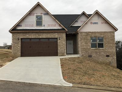 Maryville Single Family Home For Sale: 419 Royal Oaks Drive Drive