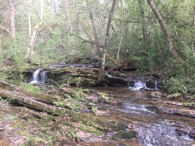 Loudon County Residential Lots & Land For Sale: 0 Jim Dyke Rd
