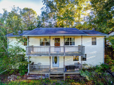 Sevierville Single Family Home For Sale: 1765 Rauhuff Hollow Rd
