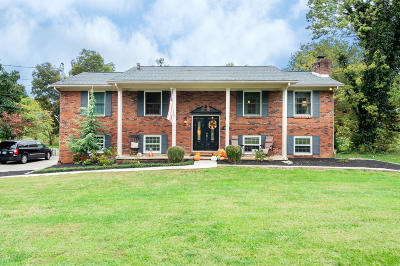 Knoxville Single Family Home For Sale: 929 Suwannee Rd