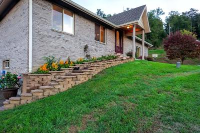 Sevierville Single Family Home For Sale: 3201 Engle Town Rd
