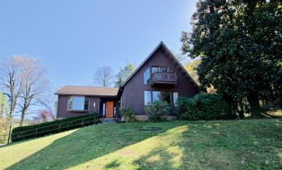 Single Family Home For Sale: 341 E Chestnut Hill Rd