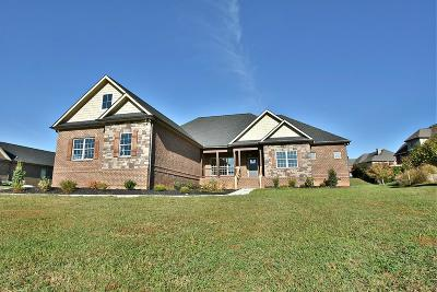 Blount County Single Family Home For Sale: 3319 Bridgewater