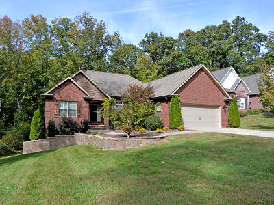 Lenoir City Single Family Home For Sale: 562 Carrington Blvd