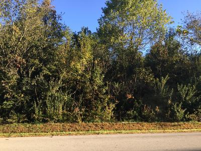 Residential Lots & Land For Sale: 120 Saloli Way