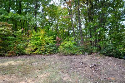 Townsend TN Residential Lots & Land For Sale: $27,700