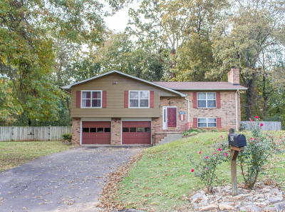 Knoxville Single Family Home For Sale: 921 Corning Rd