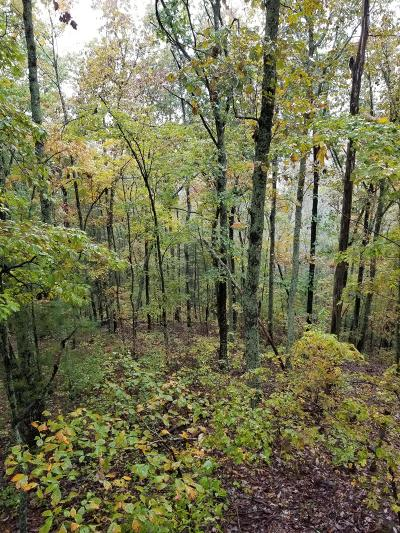 Luttrell Residential Lots & Land For Sale: 149 Freedom Way