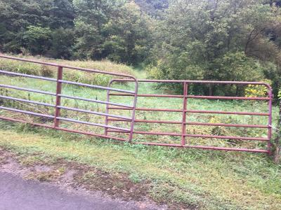 Tazewell Residential Lots & Land For Sale: 0 Lower Caney Valley Rd