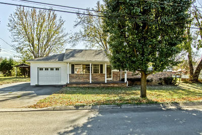 Sweetwater Single Family Home For Sale: 216 Borden St. St
