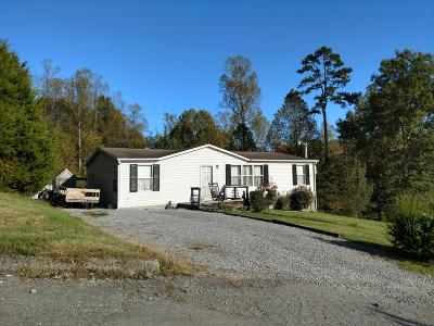 New Tazewell Single Family Home For Sale: 204 Fawn Trail Drive