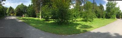 Greenback Residential Lots & Land For Sale: 225 Northshore Drive