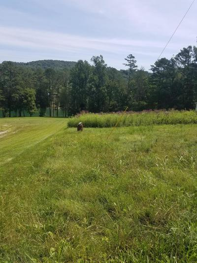 Anderson County, Campbell County, Claiborne County, Grainger County, Union County Residential Lots & Land For Sale: Blue Ridge Rd