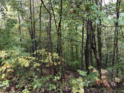 Maynardville Residential Lots & Land For Sale: Hickory Star Rd Lot 32