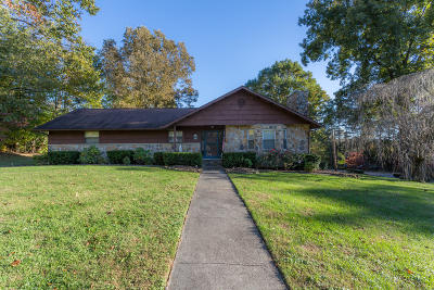 Knoxville Single Family Home For Sale: 7300 Nolichucky Lane