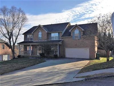 Knoxville Single Family Home For Sale: 2814 Cypress Point Lane