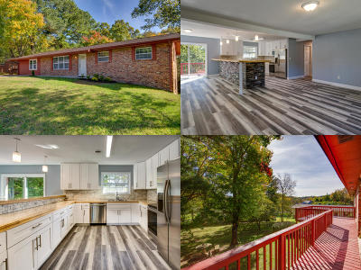 Sevierville Single Family Home For Sale: 412 Kingfisher Ave