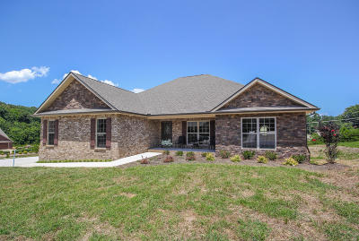 Lenoir City Single Family Home For Sale: 1197 Conner Lane