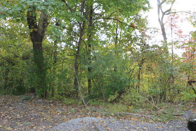Seymour Residential Lots & Land For Sale: Lot 57 Smoky Mountain View Drive