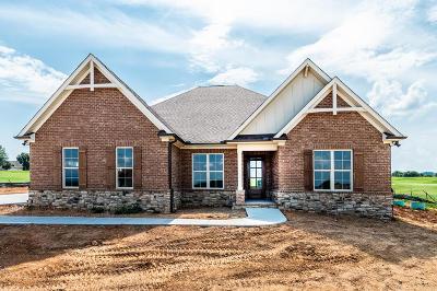 Vonore Single Family Home For Sale: 120 White Hawk Drive