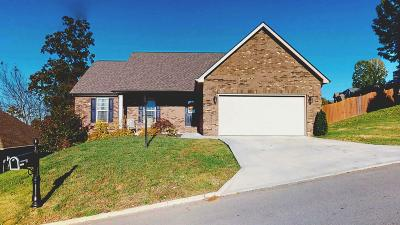 Maryville Single Family Home For Sale: 710 Devictor Drive