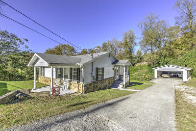 Caryville Single Family Home For Sale: 379 Old Vasper Rd