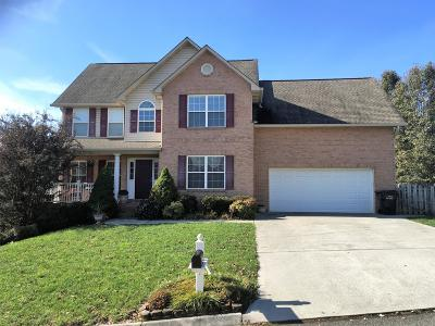 Knoxville Single Family Home For Sale: 533 Mountain Pass Lane