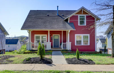 Single Family Home For Sale: 920 Knoxville College Drive