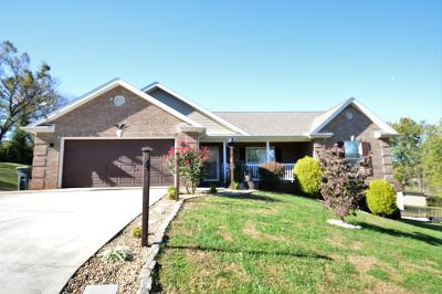 Friendsville Single Family Home For Sale: 107 Unity Way