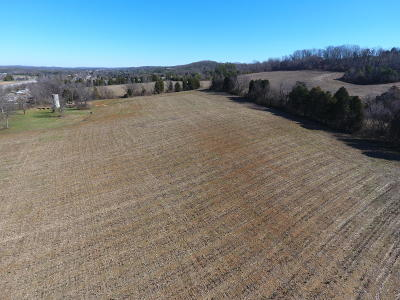 Greenback Residential Lots & Land For Sale: 7431 S Highway 411