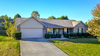 Maryville Single Family Home For Sale: 2809 Mayfly Way