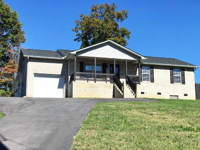 Hamblen County Single Family Home For Sale: 2099 Raven Rd