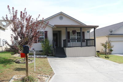 Knoxville Single Family Home For Sale: 7404 Werkbund Way